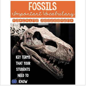 Fossils Vocabulary Matching