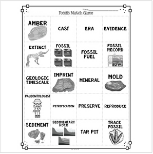 Fossils Vocabulary Interactive Match Game for Comprehension