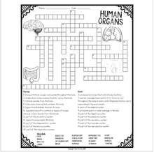 Load image into Gallery viewer, Human Organs Crossword