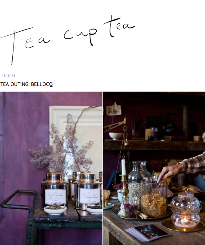 Tea Cup Tea - Bellocq