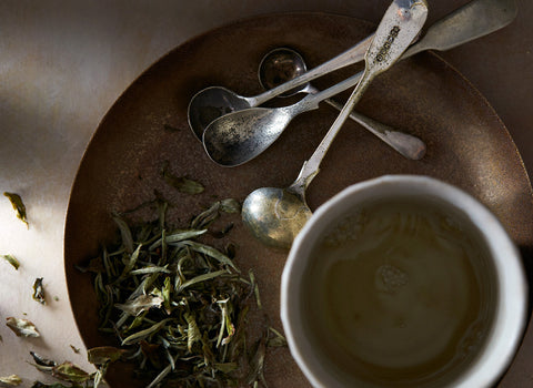 Shop organic white tea and loose leaf white tea at Bellocq.