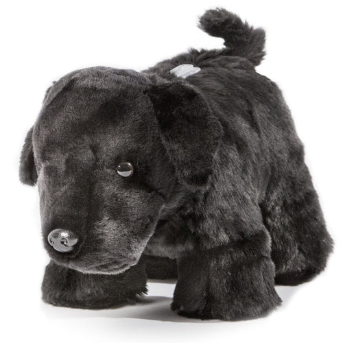 Black Lab Coin Bank