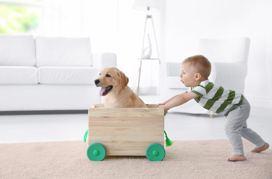 What are the Effects of Pets on Child Development?