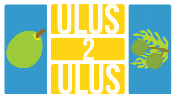 Ulus 2 Ulus Card Game