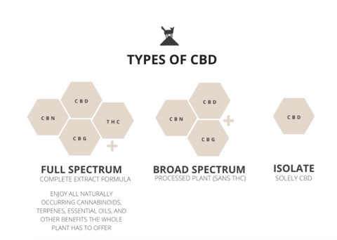 types of cbd graphic