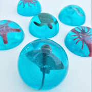Mystery Sea Creatures Jelly Soap
