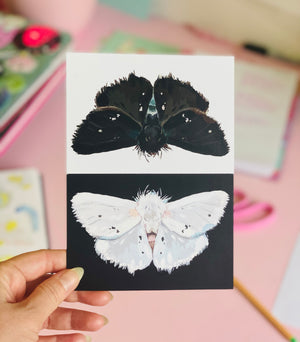 Postcard Print - Light and Dark Moths