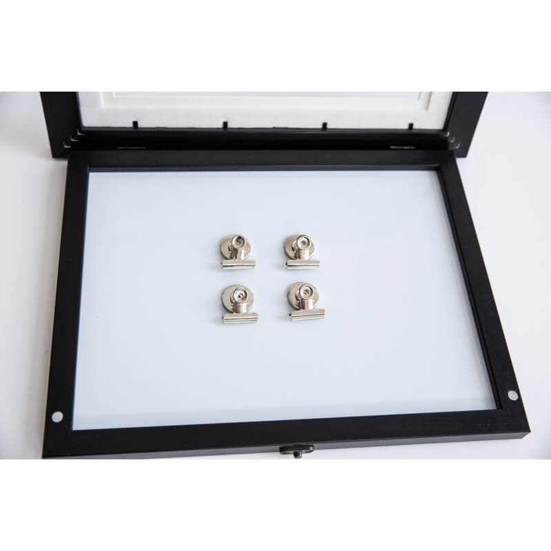 Hugo Bulldog Clip Magnets - Set of 4