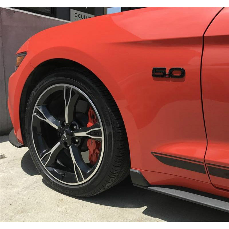 GT350 Style Rock Blocker Winglets