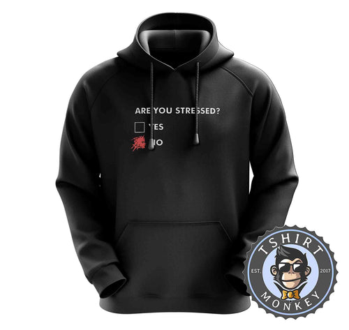 Are You Stressed Funny Statement Typography Graphic Hoodies Hoodie Hoody Jumper Pullover Mens Ladies Kids Unisex 1418