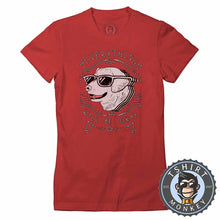 Load image into Gallery viewer, Everything Will Be Ok - Cool Dog Graphic Tshirt Lady Fit Ladies 1209