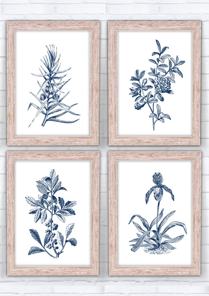 Hampton Style Botanical Flowers Set of 4