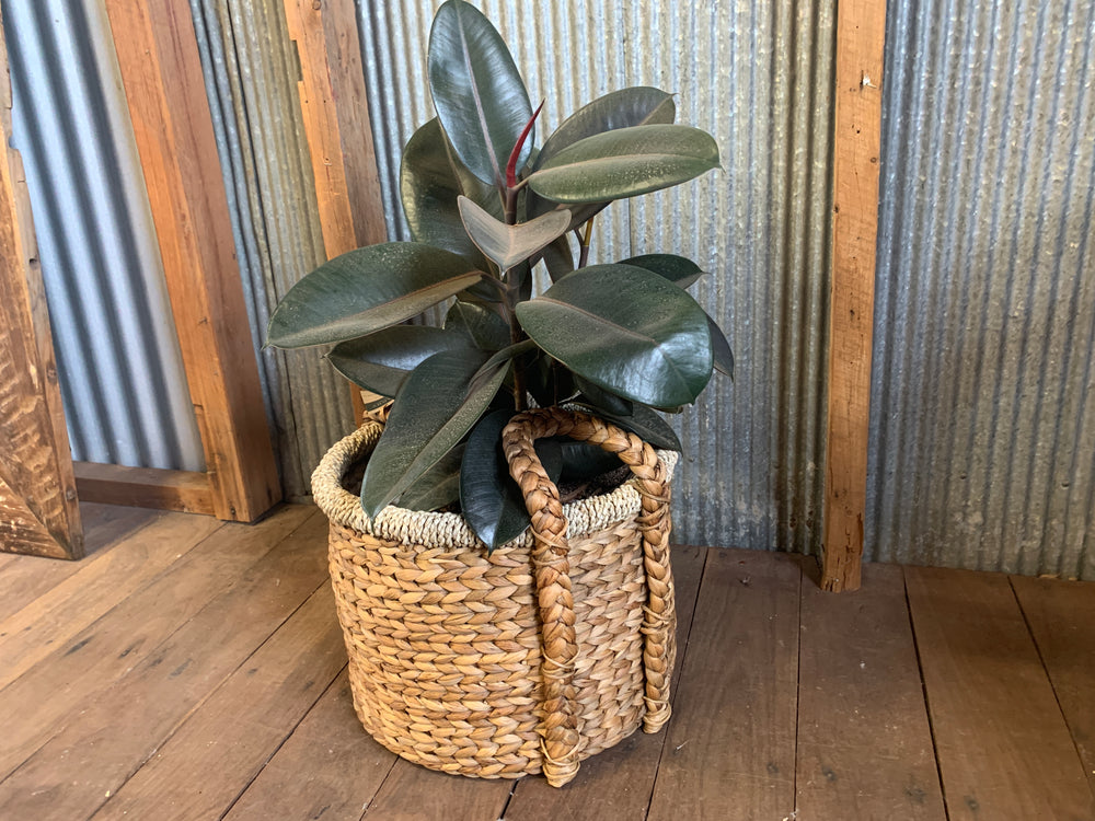 Deep Bungalow Storage Basket