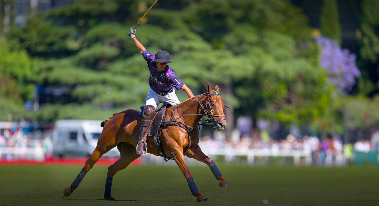 Pologear Shop Our Authentic Polo Apparel Now Pologear Usa