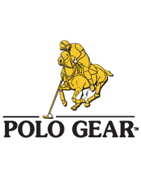 Vector image of polo player