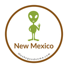 New Mexico alien ufo picture iron on patch it looks good on me
