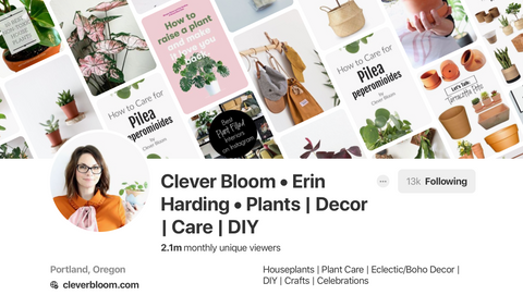 Clever Bloom on Pinterest