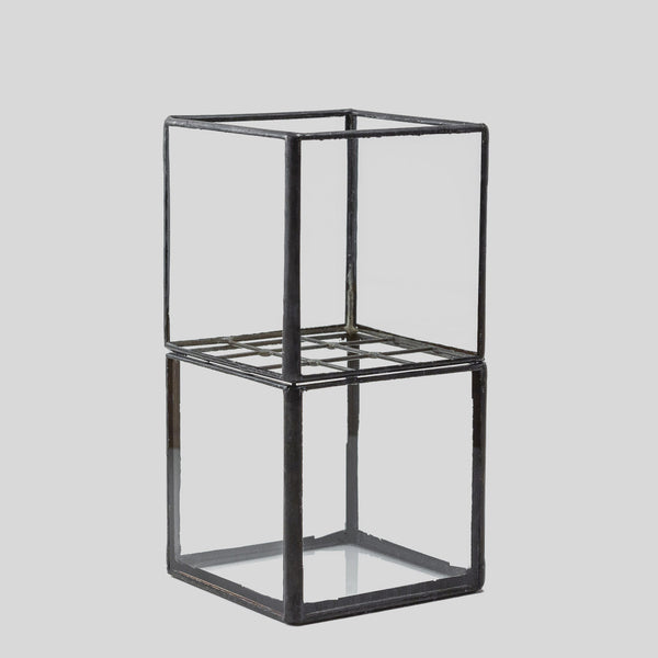 Glass Propagation Vase with Grid
