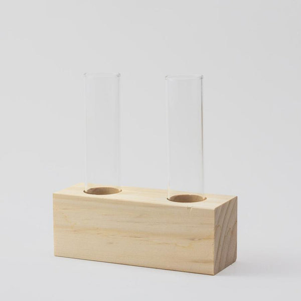 simple test tube propagation station
