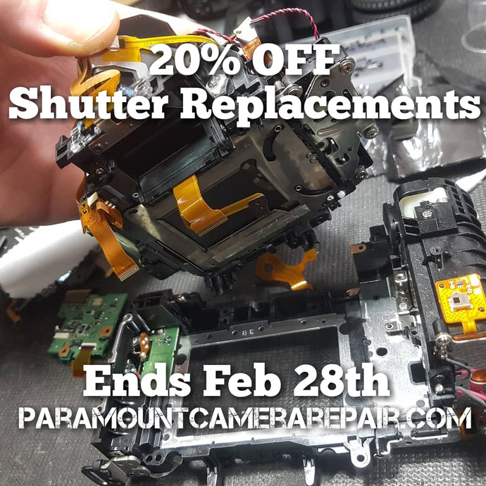 20% Off all Shutter Replacements till Feb 28th