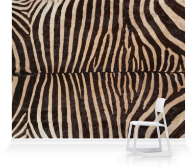 zebra mural surface View