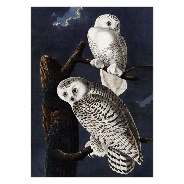 vintage snowy owl poster