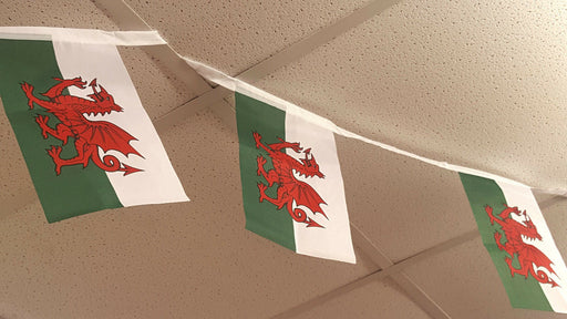 Welsh Bynting Welsh Red Dragon Banner - 4.5m - Siop Y Pentan