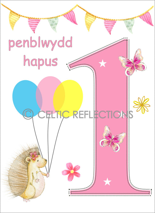Happy Birthday Celtic Reflections - Siop Y Pentan
