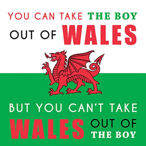 You Can Take The Boy Out Of Wales.. | Paintbox - Siop Y Pentan