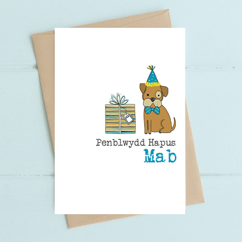 Happy Birthday Son Dandelion Stationery - Siop Y Pentan