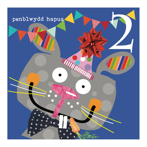 Happy Birthday 2 Years Two Little Monkeys - Siop Y Pentan