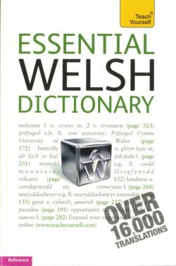 Teach Yourself: Essential Welsh Dictionary