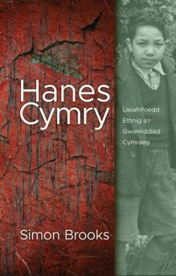 Welsh History - Ethnic Minorities and the Welsh Civilization - Siop Y Pentan