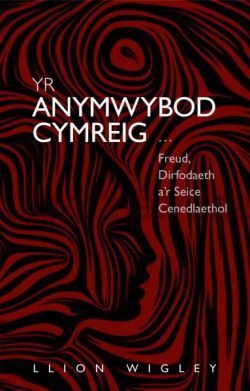 The Welsh Unconscious: Freud, Dictatorship and the National Seine - Siop Y Pentan