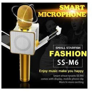 M6 Wireless 4.0 Bluetooth Karaoke Mic Speaker with LED Display and Clip - Marheba