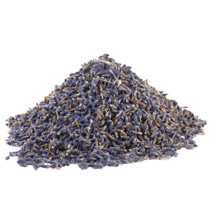 LAVENDER FLOWER SUPER BLUE