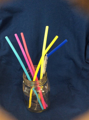 "9"" Silicone Straw Set"