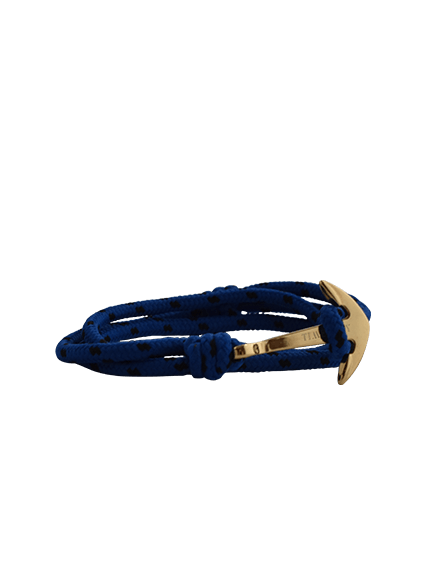 BRIGHT BLUE & GOLD - TimexuryWatches