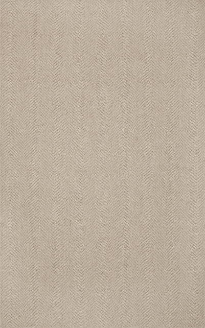 Monaco Sisal MC200 Linen Herringbone 5x8 Rug From Dalyn