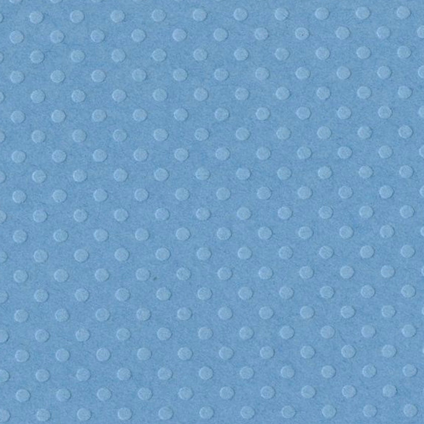 Dotted Swiss Cardstock - Poolside