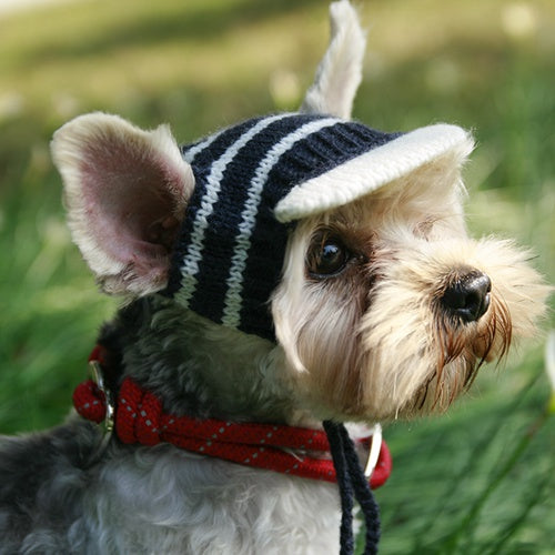 Knitted Style Dog Hat