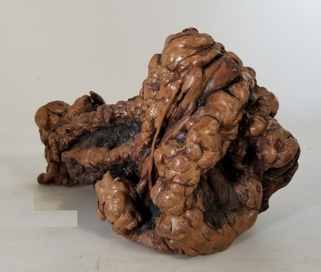 BURLED KNOT STATUE
