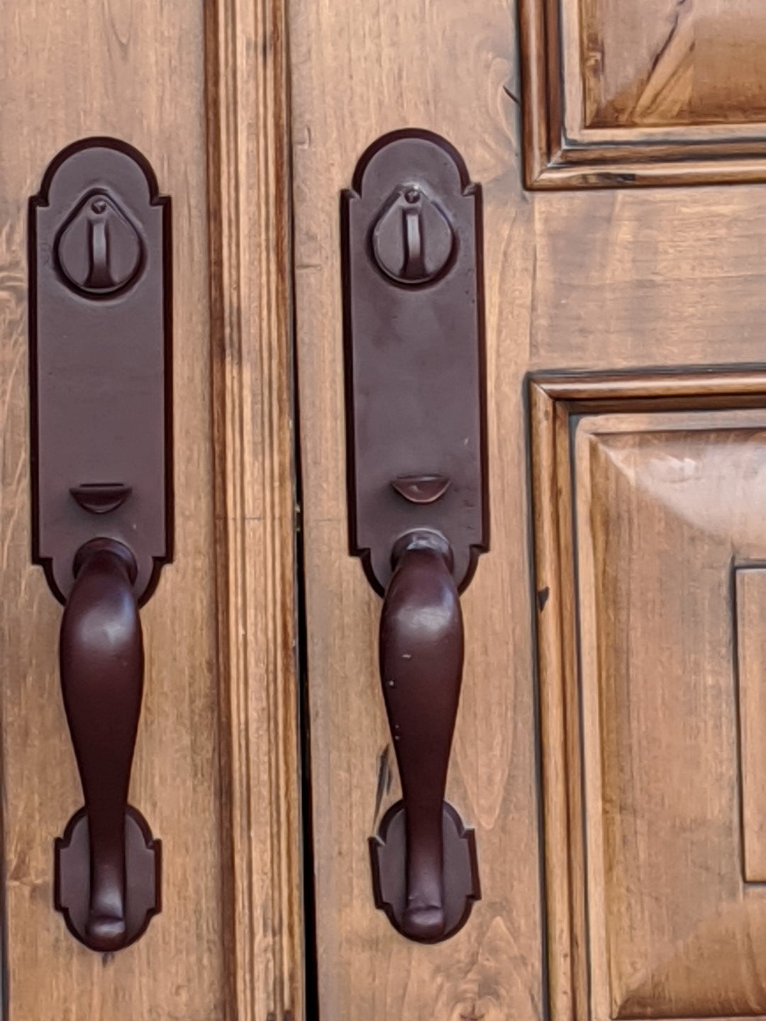 PAIR OF ALDER PANELED ENTRY DOORS