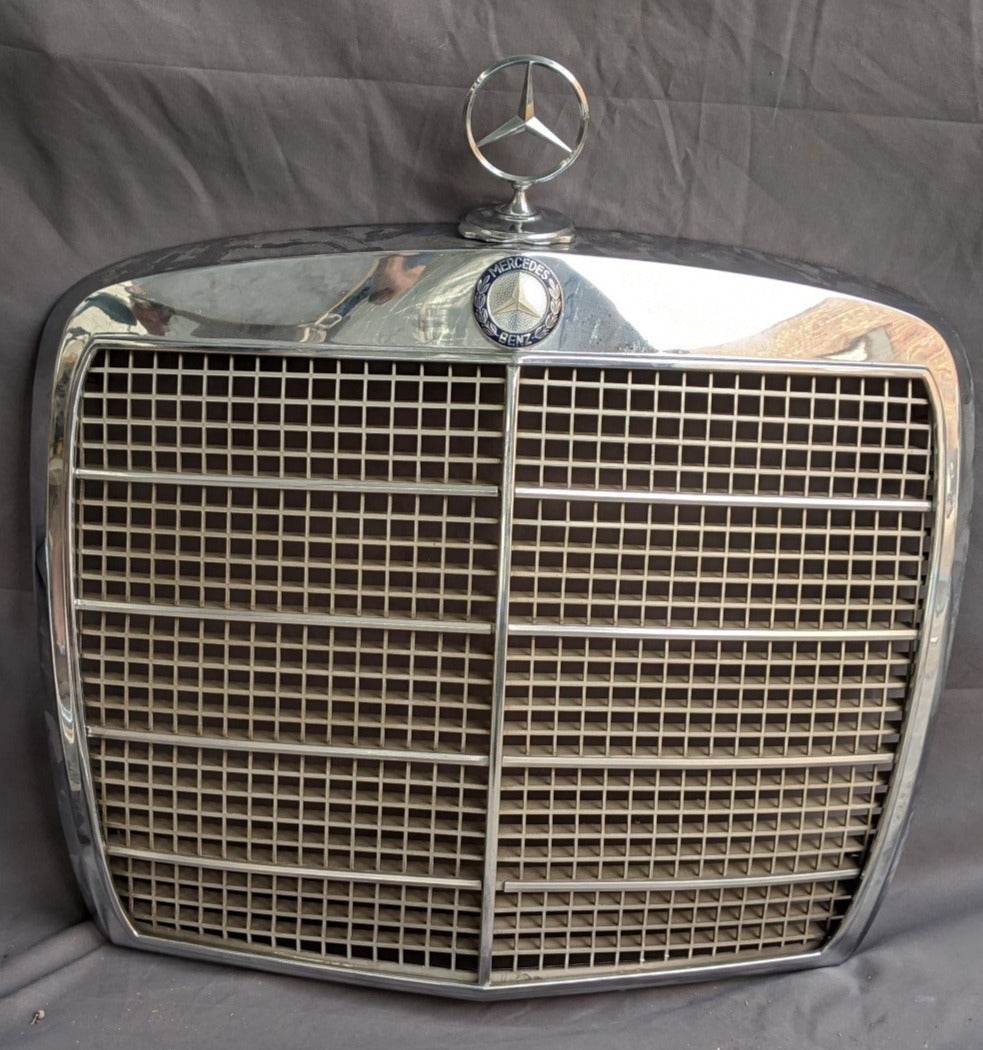 GRILL OFF OF A MERCEDES BENZ
