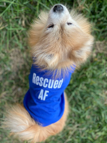 Rescued AF Dog Shirt (2 Colors)