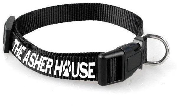 The Asher House Dog Collar