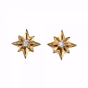 The Shining Star Earrings