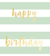 Happy Birthday Mint Wrap Tag