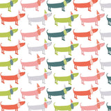 Pet Passion Wrapping Paper Pack
