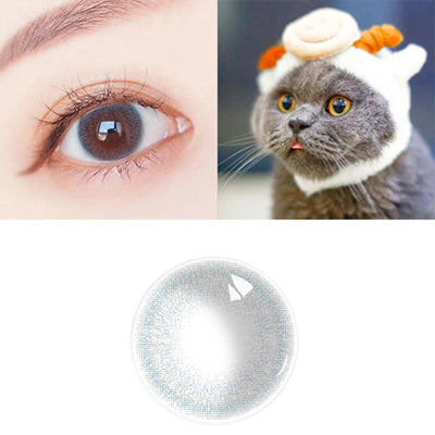 Life Gray Contact Lenses - Zebrant